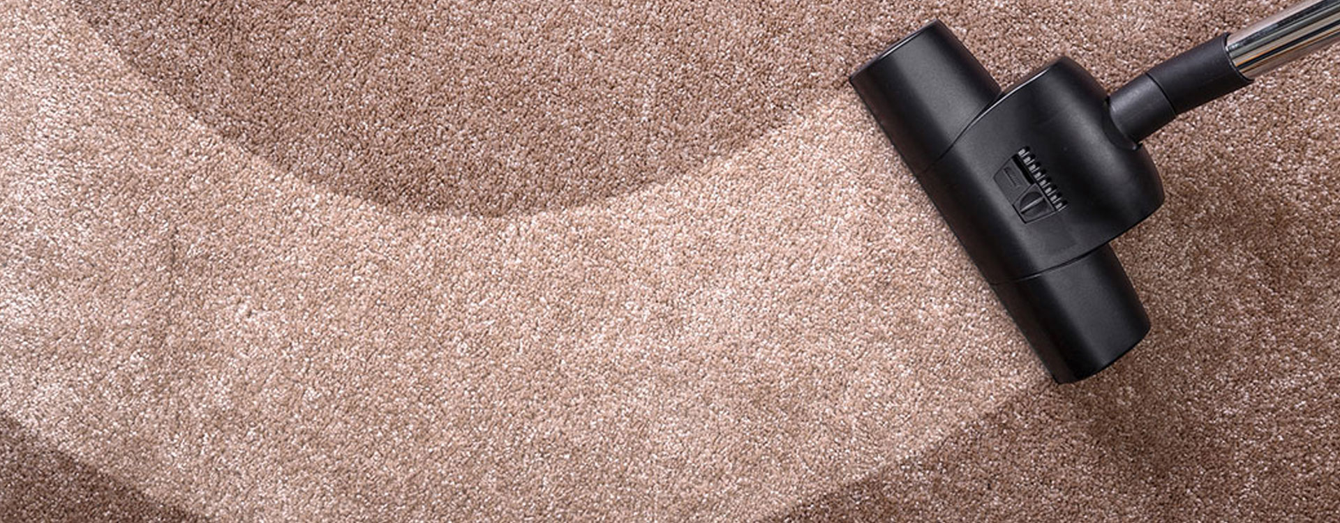 professional carpet cleaner Anchorage